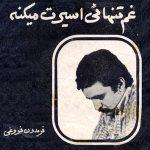 غم تنهایی - فریدون فروغی