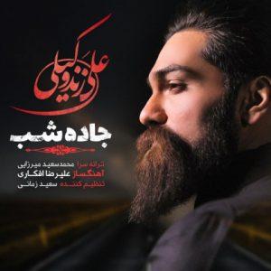 دانلود آهنگ جاده شب - علی زند وکیلی