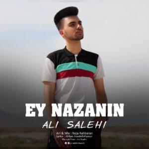 دانلود آهنگ ای نازنین از علی صالحی