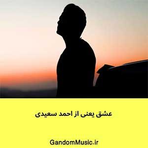 اهنگ عشق یعنی حال من باهات خوبه احمد سعیدی دانلود