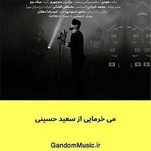 اهنگ شلال می خرمایی الهه زیبایی لری سعید حسینی دانلود