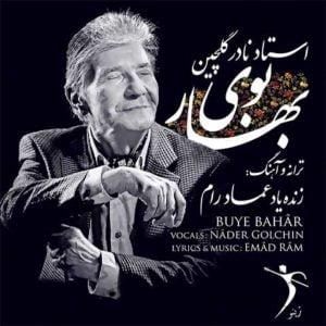 دانلود آهنگ من دیگه بچه نمیشم از نادر گلچین