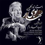 دانلود آهنگ بوی بهار از نادر گلچین